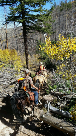 wade lemon mossback hightop southern utah guide guiding mule deer outfitters fnh utah dutton paunsagaunt panguitch bull elk turkey elk guiding guides fnh f-n-h outfitters